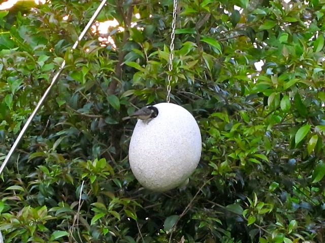 14 - El carbonero garrapinos hizo su nido en la escultura