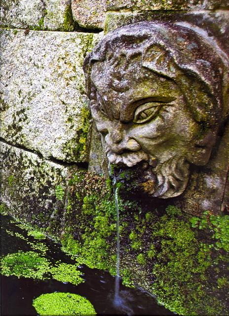 5 - Mascarón en la fuente